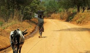 Livingstonia, Malawi