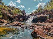 Kakadu, Australië